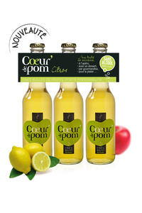 Fines Bulles de Fruits Citron - 3X27.5cl