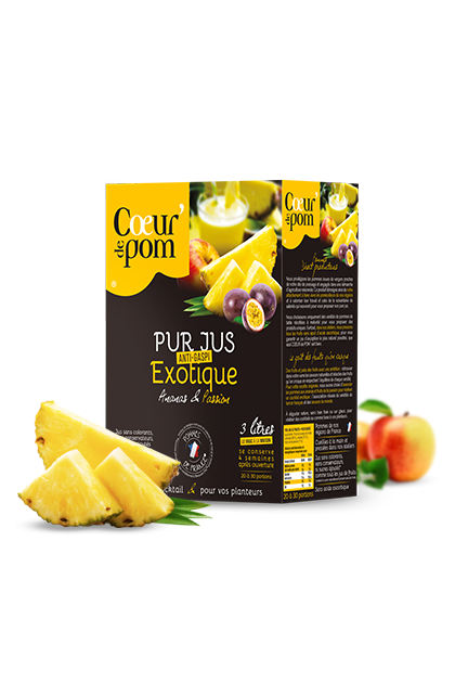 Pur jus de Fruits Exotique - Bag In Box 3 L