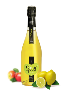 Fines Bulles de Fruits Citron - 75cl